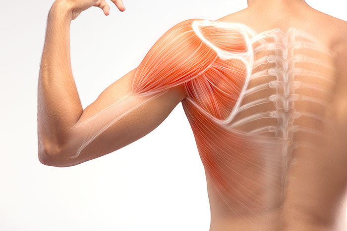 Regenerative Medicine for Shoulder Osteoarthritis